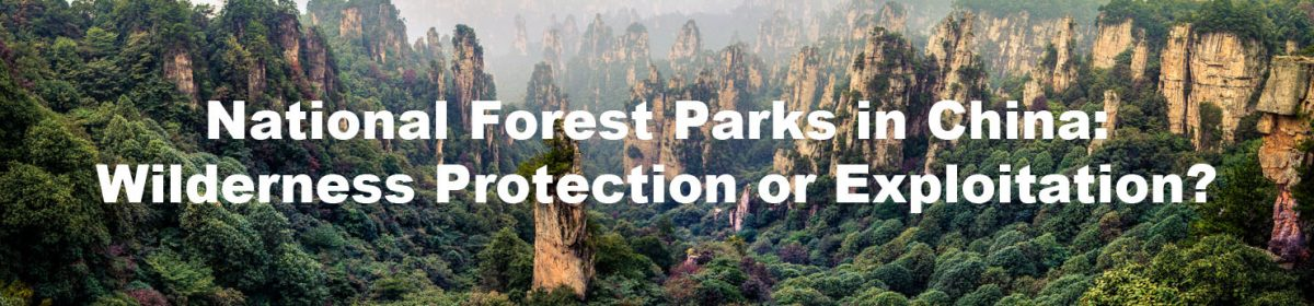 Wilderness Protection